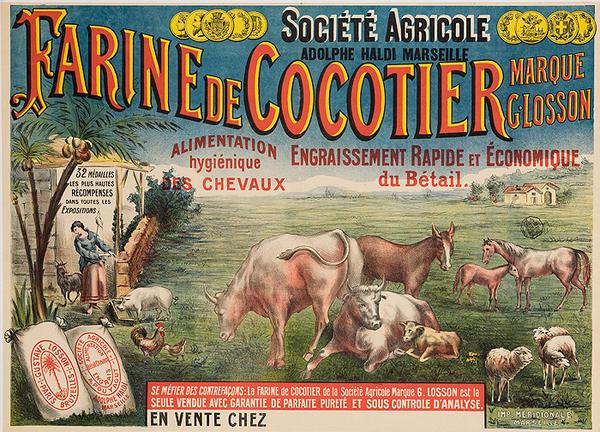 Farine de Cocotier Original French Animal Feed Poster
