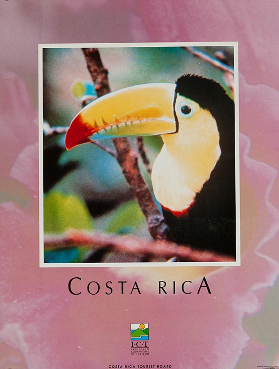 Costa Rica Original Travel Poster Beach bird