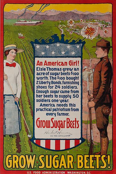 Grow Sugar Beets! Original American WWI Poster