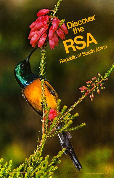 Original South Africa Travel Poster Discover RSA Bird