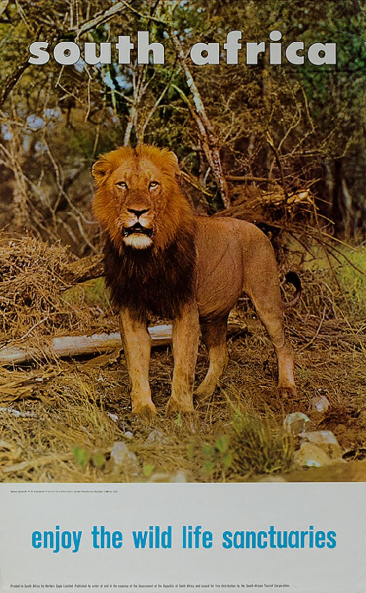 South Africa Travel Poster, Enjoy the Wild Life Sanctuaries Lion